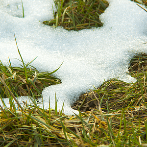 seasonal-faq-spring-melting-snow