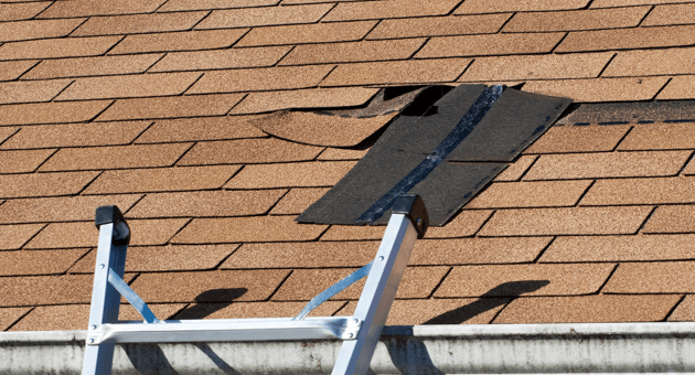 storm-and-shingle-damage-roof-image.png