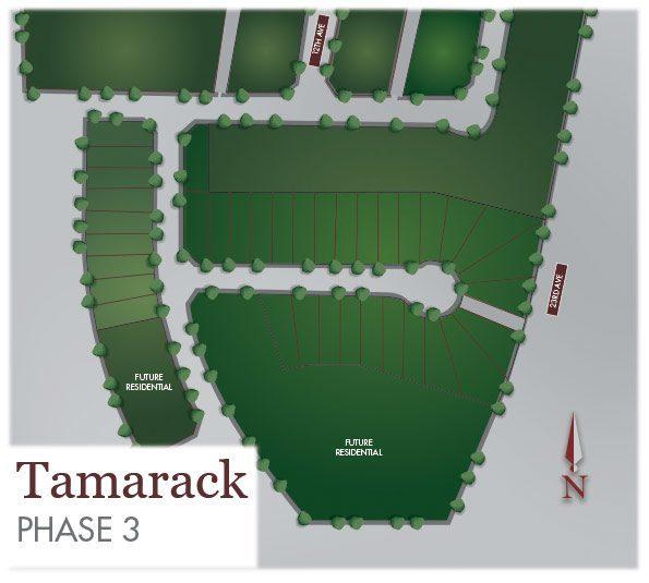 selecting-your-lot-tamarack-common-plan.jpg
