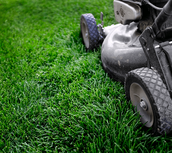 How to Care For Your Lawn Mowing image