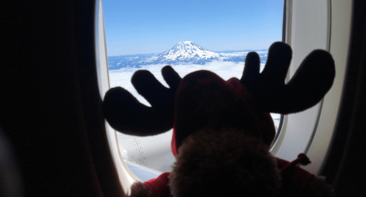 Bringing Canada Worldwide! Early Morning Flight image