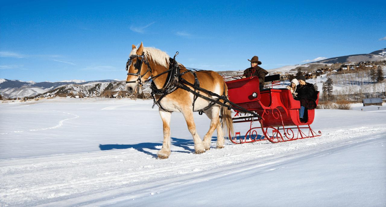 Edmonton's Best Kept Winter Hangouts Sleigh Featured Image