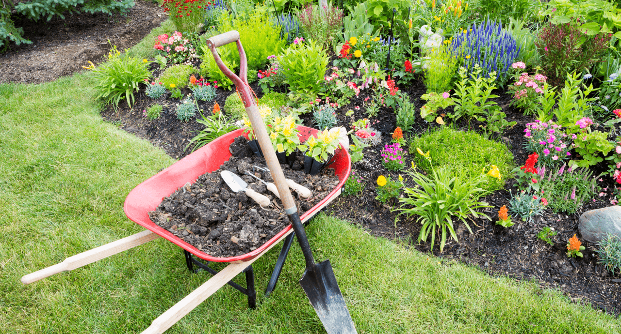 Summer Landscaping Tips and Tricks Featured Image