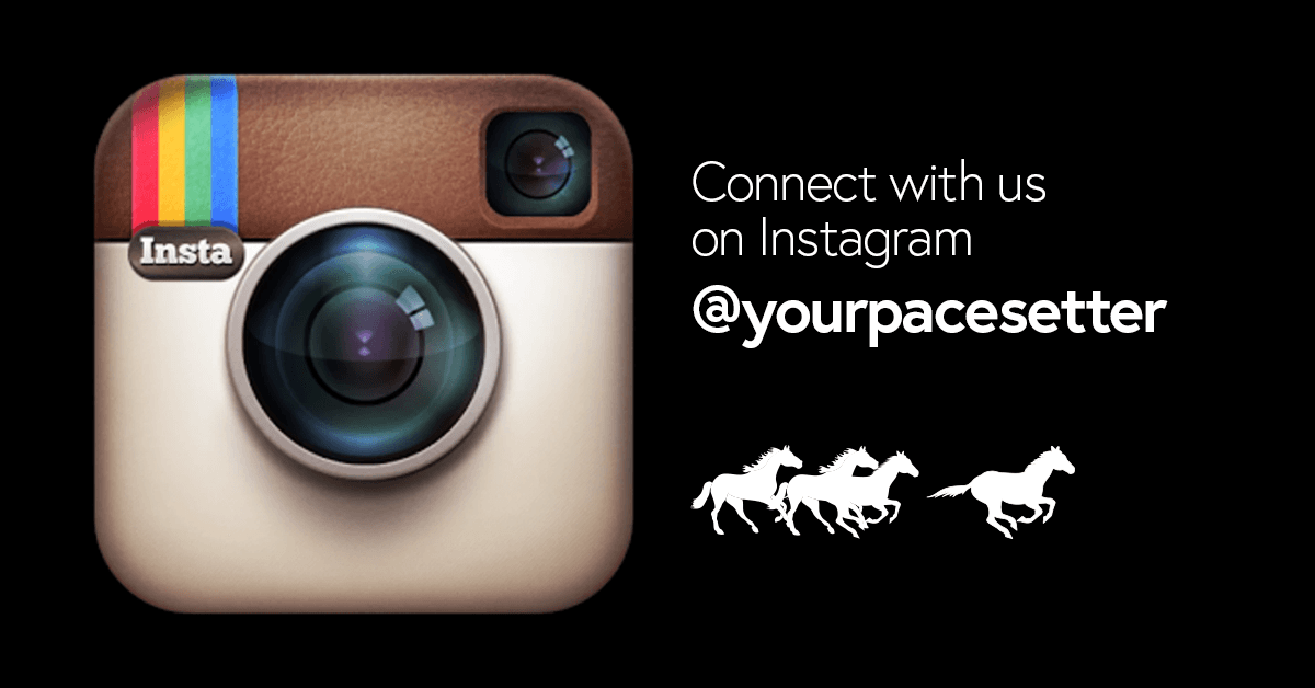 Check Our New Instagram! Featured Image