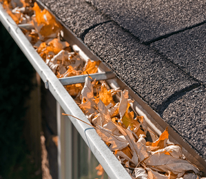 Inside and Out: A Basic Fall To-Do List for Your Home Gutter Image